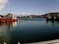 Beara, Castletownbere, de haven